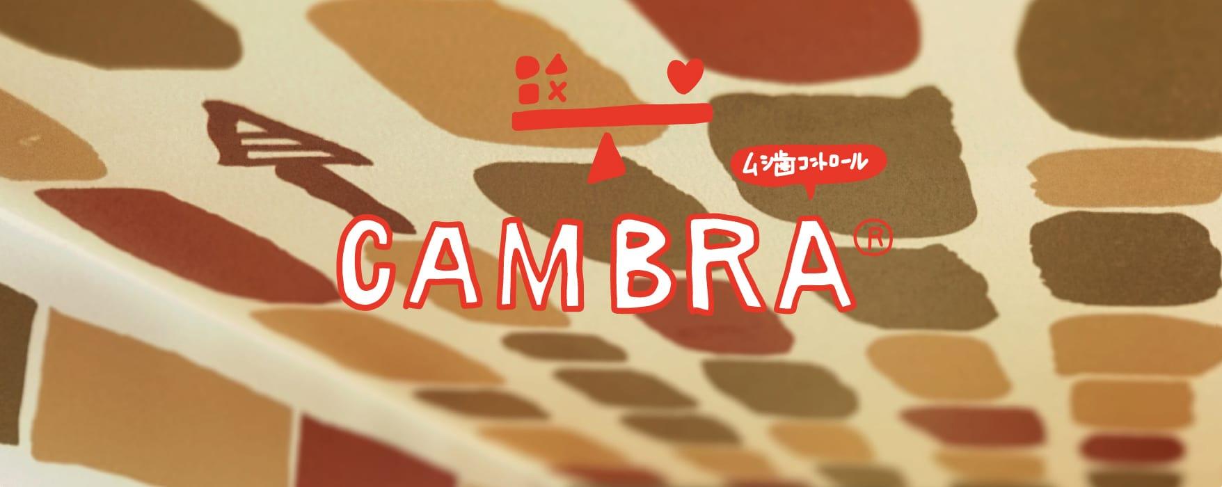 エビデンスに基づく「CAMBRA®」